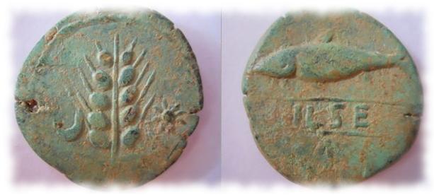 II CONCURSO IMPERIO-NUMISMÁTICO - //Pueblo Ibérico// 1135